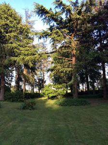 Moisdon-la-Rivière - maison de 200 m2 5 chambres - terrain…