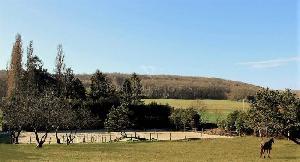 Propriété Equestre entre Rambouillet et Fontainebleau